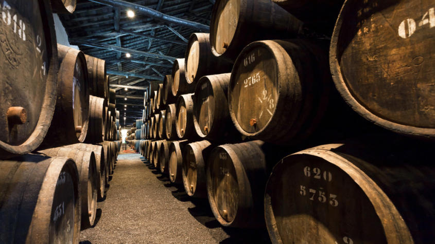 How to choose the best Port Wine Cellar for you?